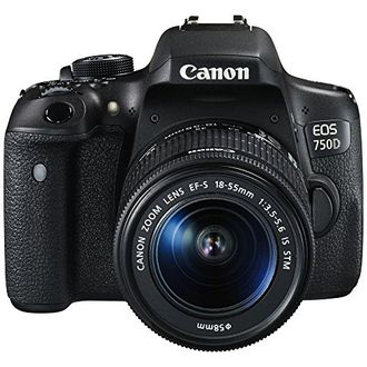 Canon EOS 750D DSLR Camera (with 18-55 STM Lens)